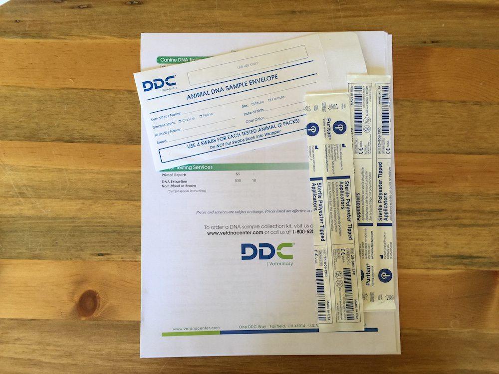 DDC DNA KIT