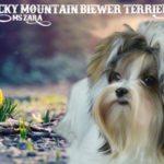 Rocky Mountain Ms Zara