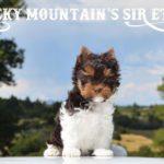 Rocky Mountain's Sir Ethan