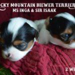 Rocky Mountain's Ms Inga