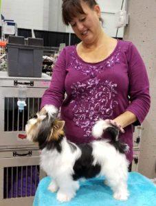Janice S Dog Grooming