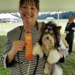 Best of Breed Biewer Terrier Rocky Mountain Biewer Terriers