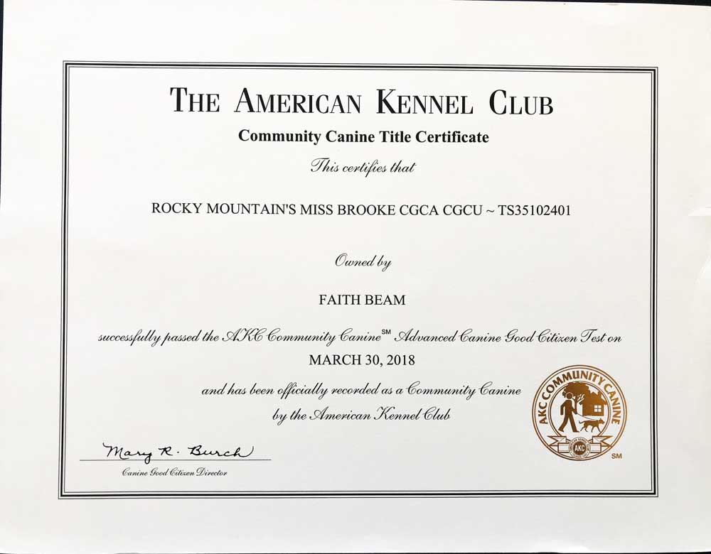 Rocky Mountain's Miss-Brooke Biewer Terrier AKC Community Canine Title Certificate