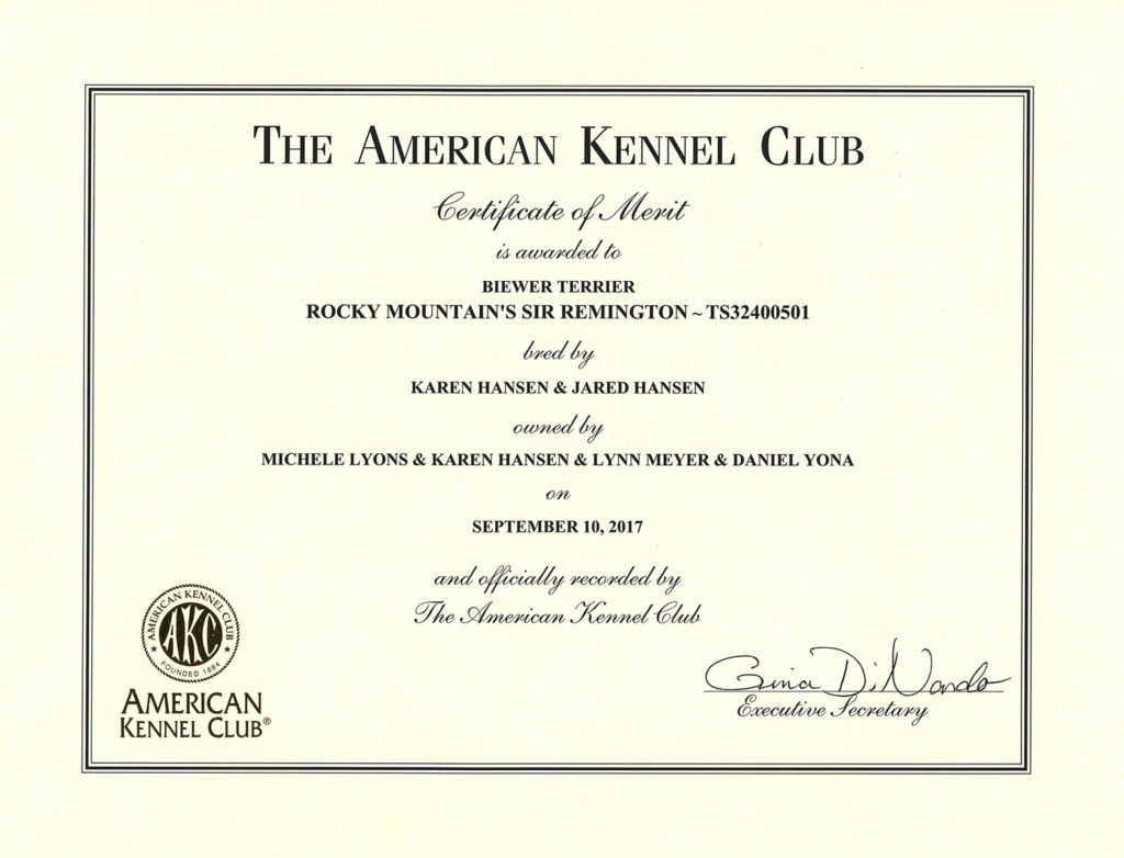 Certificate of Merit for Rocky Mountain's Sir Remington