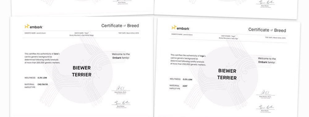 Pure Bred Certificates for Rocky Mountain Biewer Terriers