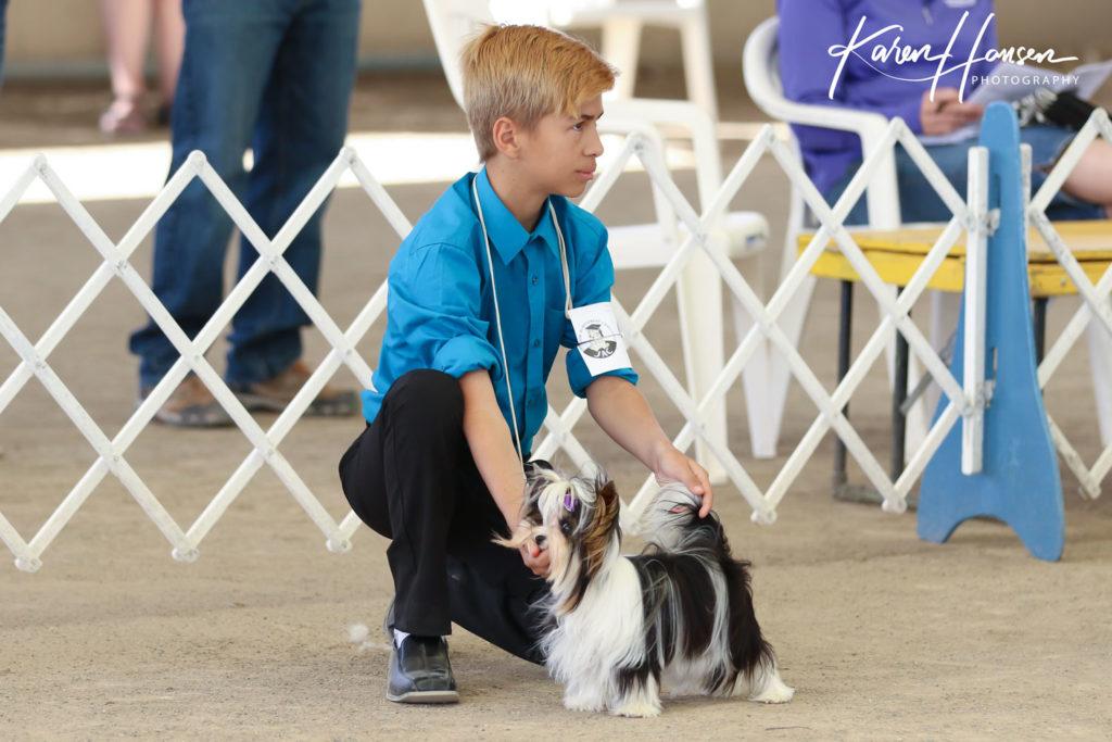 Leon Hansen with Biewer Terrier Lady Dolly.