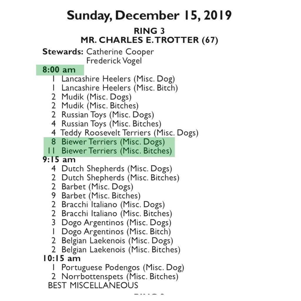 Sunday - AKC - 12/13/2019 Orlando