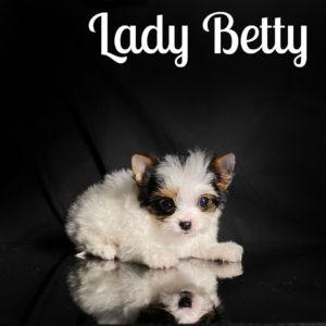 Betty Biewer Puppy