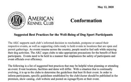 Suggested Best Practices for the Well-Being of Dog Sport Participants