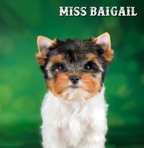 Abigail-11-weeks