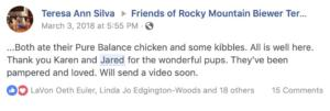 Friends of Rocky Mountain Biewer Terriers Experience27