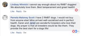 Friends of Rocky Mountain Biewer Terriers Experience31