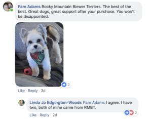 Friends of Rocky Mountain Biewer Terriers Experience4
