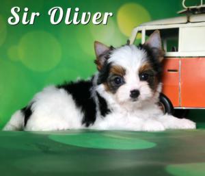 Oliver8-Weeks-1