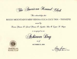 AKC Achiever Dog Rocky Mountain's Miss Vienna